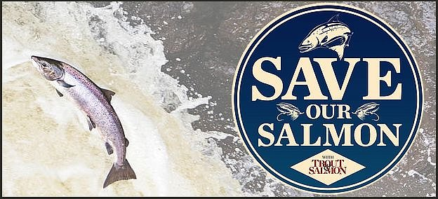 save-our-salmon.jpg